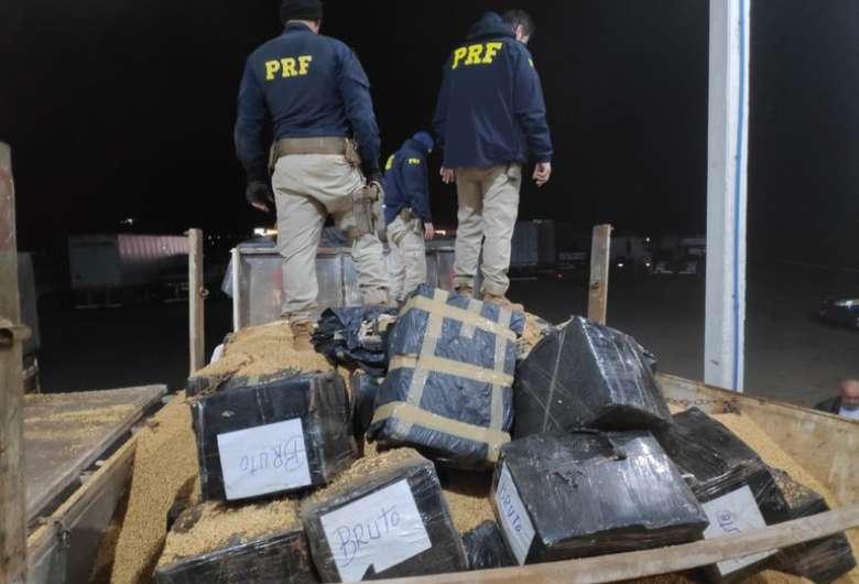 Polícia encontra 10t de maconha escondidas sob carregamento de soja