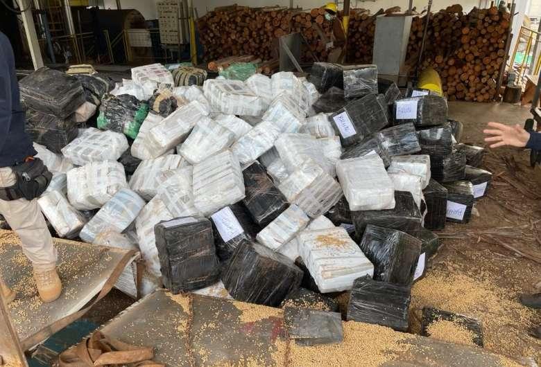 Polícia incinera mais de 10 toneladas de drogas em MS